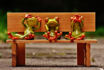 frogs-1610563_1280